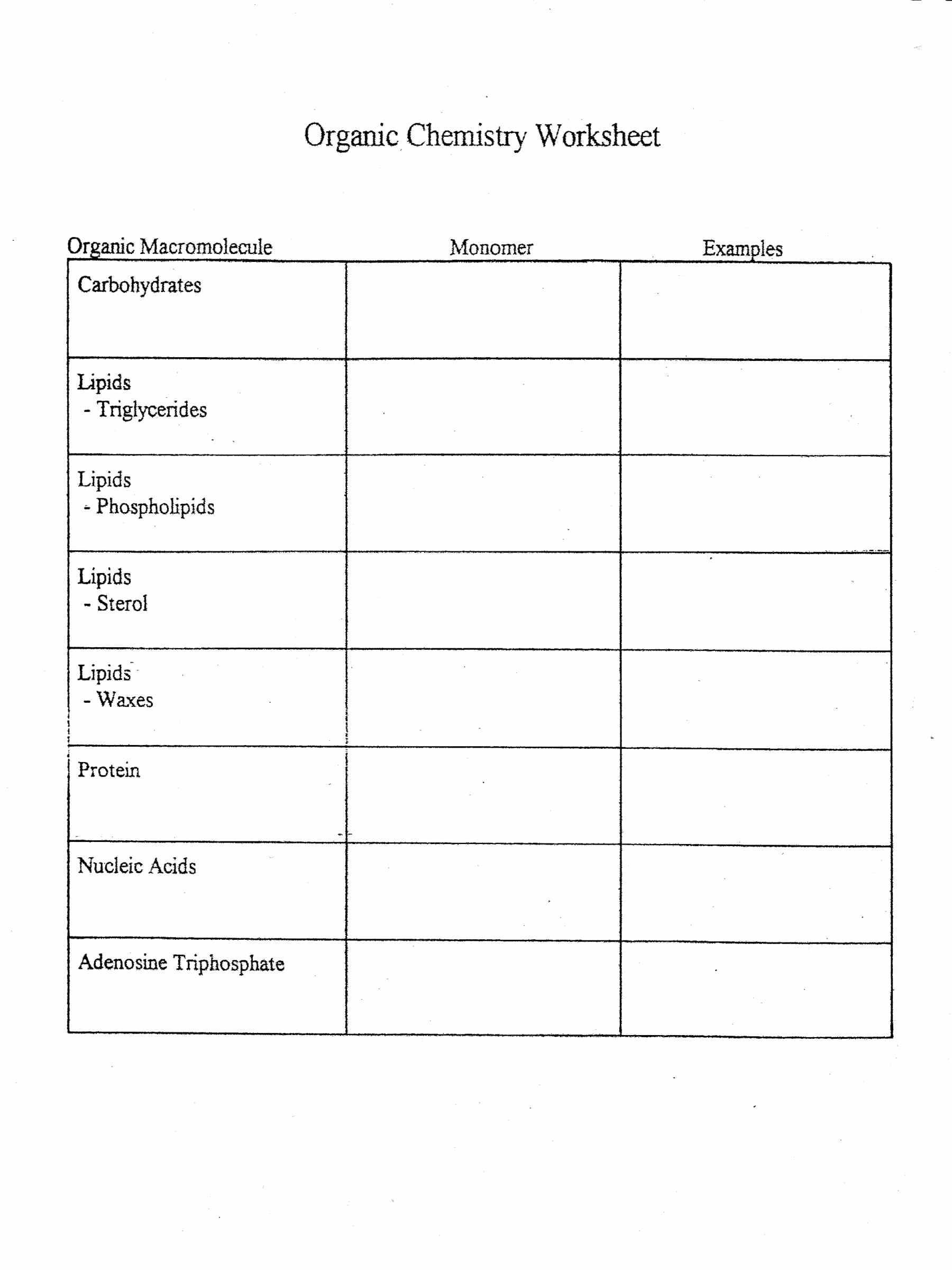 Worksheets Biomolecules Worksheet eihseba Free Worksheets – Biomolecules Worksheet